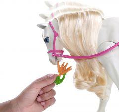 Set Mattel - Barbie si Calul de Vis cu activitati