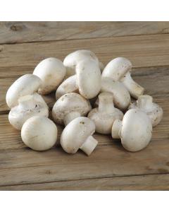 Ciuperci proaspete Mini Champignon 250g