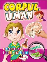 Corpul uman - Creierul si sistemul nervos