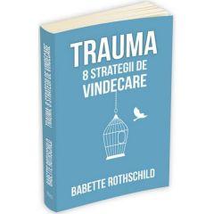 Trauma: 8 Strategii de vindecare - Babette Rothschild