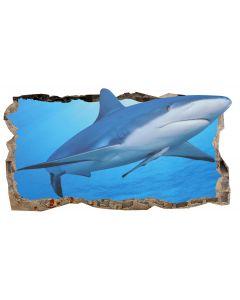 Fototapet 3D Startonight Un rechin prietenos, luminos in intuneric, 2.20 x 1.20 m