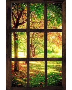 Fototapet Startonight Fereastra spre o dimineata insorita, luminos in intuneric, 1.83 x 1.28 m