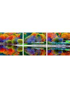 Set Tablou DualView Startonight Culorile Padurii, 3 piese, luminos in intuneric, 60 x 180 cm (3 piese x 60x60 cm)