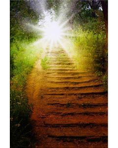 Tablou DualView Startonight Calea spre Rai, luminos in intuneric, 20 x 30 cm