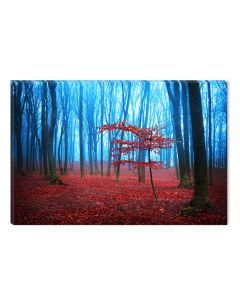 Tablou DualView Startonight Ceata rosie, luminos in intuneric, 60 x 90 cm