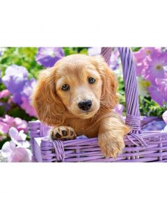Puzzle Castorland 1000 Puppy in Basket