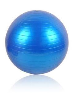 Minge Mare pentru Fitness, Recuperare sau Gimnastica, Diametru 55cm, Culoare Albastru