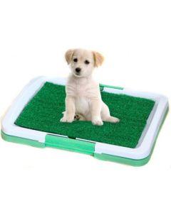 Tavita Toaleta pentru Casa cu Gazon Artificial pentru Caini, Pisici sau Alte Animale de Companie