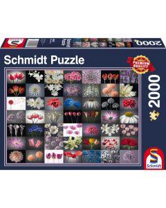 Puzzle Schmidt 2000 piese : Salut Floral