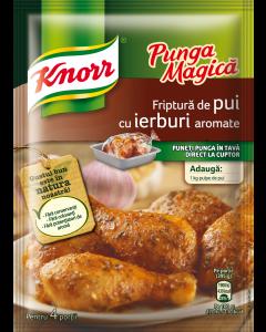 Amestec condimente pentru pui Knorr Punga Magica 25g