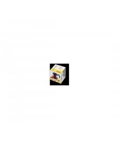 Ceanic termorezistent 1.5 L Simax