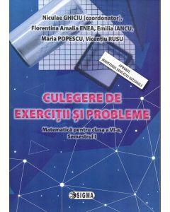 Culegere de exercitii si probleme. Matematica pentru clasa a VI-a, Semestrul I