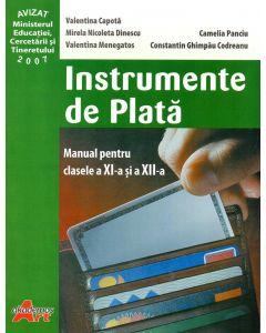 Instrumente de plata manual pentru clasa a XI-a si a XII-a