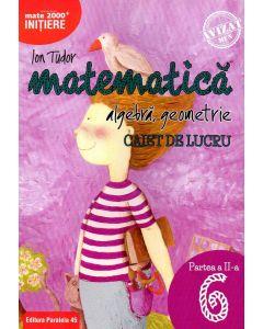 Matematica. Algebra, geometrie. Caiet de lucru. Clasa a VI-a. Initiere. Partea a II-a
