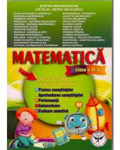Matematica clasa a VI-a. Sinteze de teorie. Exercitii si probleme. Fixarea cunostiintelor. Aprofundare. Performanta. Autoevaluare. Evaluare