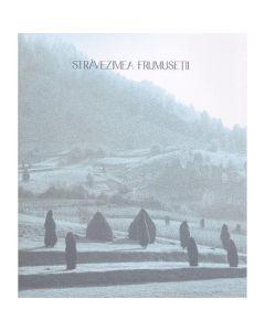 Stravezimea frumusetii - Paul Gherasim, Marius Pandele