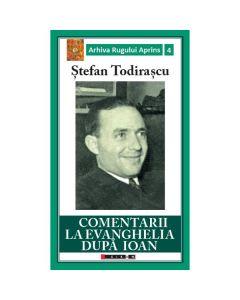 Comentarii la Evanghelia dupa Ioan - Stefan Todirascu