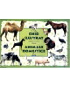 Ghid ilustrat pentru cei mici despre animale domestice - M. Tufan