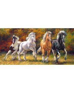 Puzzle Castorland - Born to Run, 4.000 piese (400119)