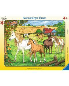 Puzzle Ravensburger - Cai La Ferma, 46 piese (06646)